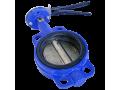 Затворы поворотные дисковые (Ду50)  с металлической рукояткой (КИТАЙ)